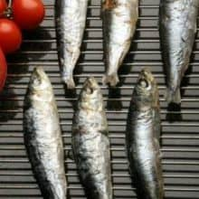 Whole Cornish Sardines - 1kg