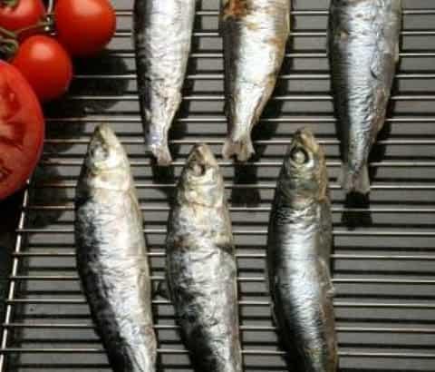Buy Whole Cornish Sardines - 1kg online