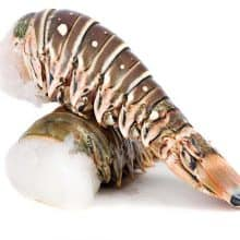 Rock Lobster Tails x 2 ( 180-200g each)