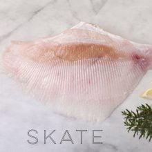 Skate Wings 1kg